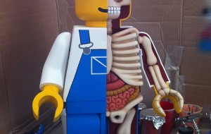 De anatomie van Lego