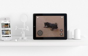 Petcube: virtueel spelen met je huisdieren