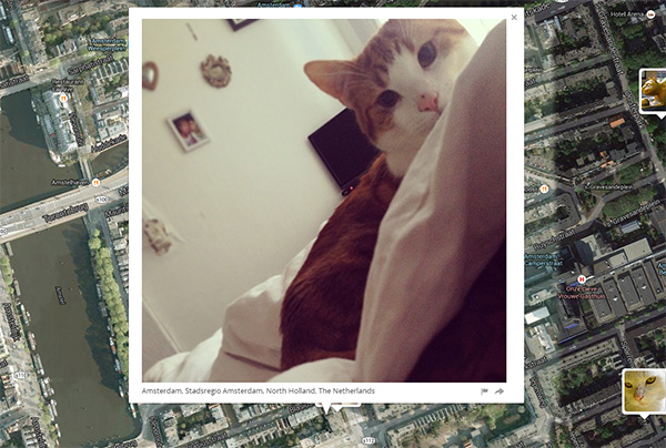 i-know-where-your-cat-lives5