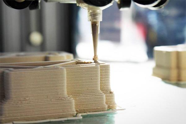 wasp-3d-printer-modder