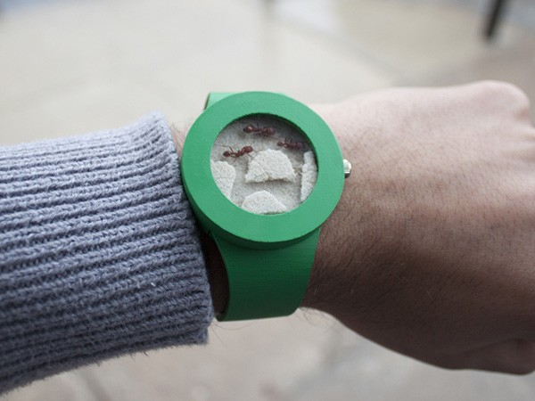 ant-watch-mieren-horloge