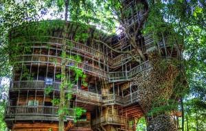 grootste-boomhut2