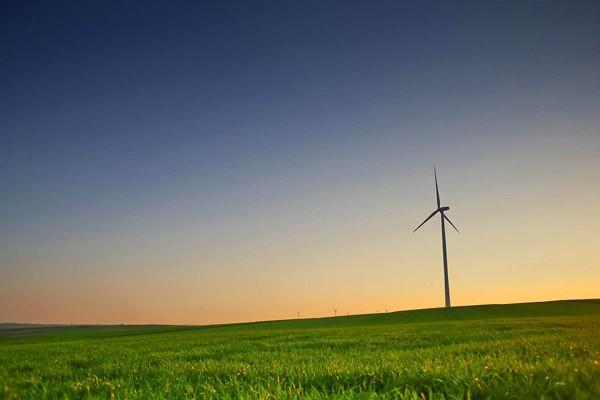 denemarken-windmolens2