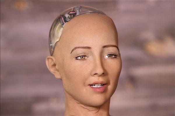 robot-sofia