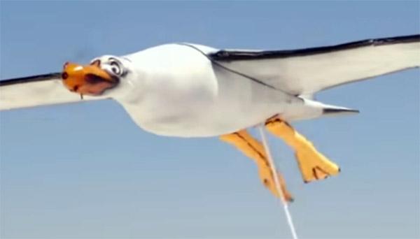 zeemeeuw-drone