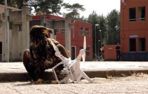 arend-drone-politie