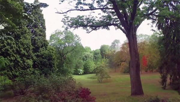 Wonderlijke drone-timelapse brengt de vier seizoenen in beeld