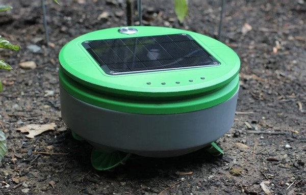 Tertill: een automatische onkruidrobot voor in de tuin