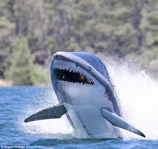 Duikboot in de vorm van een haai springt 4 meter uit het water