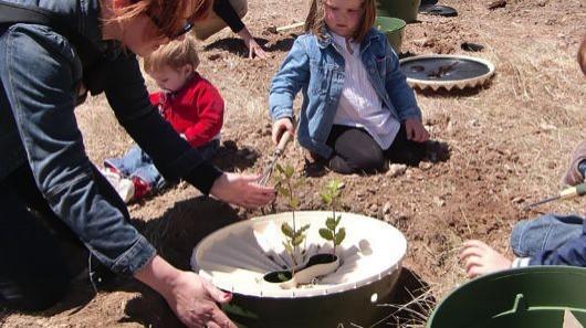 Waterboxx laat planten groeien in de woestijn