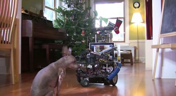 Robot past op de hond