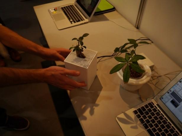 Wetenschappers creëren interactieve plant