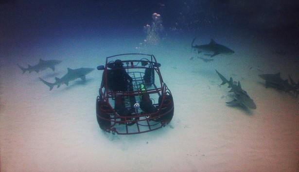 Omgebouwde Volkswagen Kever gaat naar de haaien