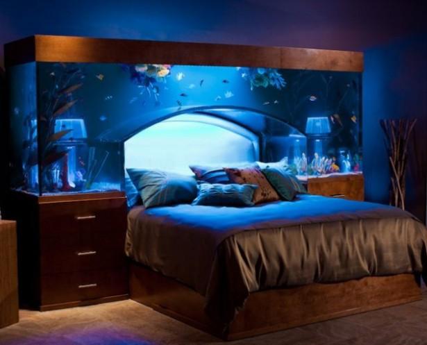 Bed/aquarium