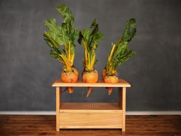 BeetBox: muziek maken met groenten