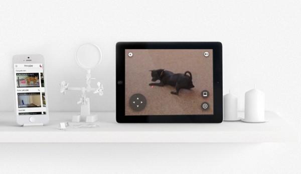 Petcube: virtueel spelen met je huisdieren
