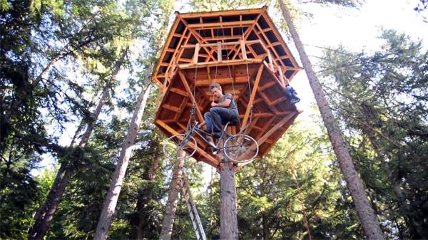 De beste manier om je boomhut te bereiken