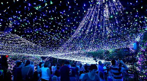 Het wereldrecord kerstverlichting