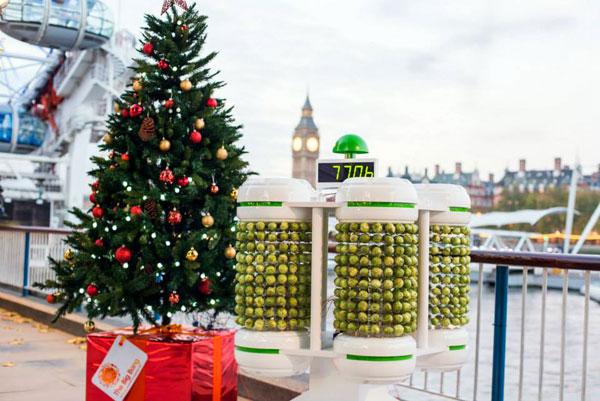 Kerstverlichting die van energie wordt voorzien door spruitjes