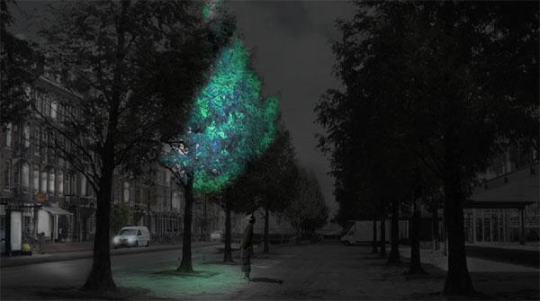 Lichtgevende bomen in plaats van straatlantaarns