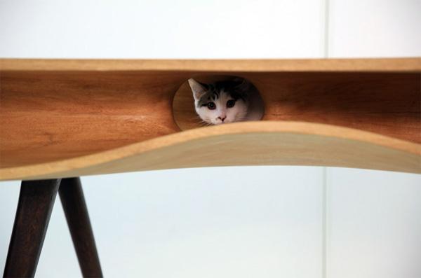 catable-kat-tafel2