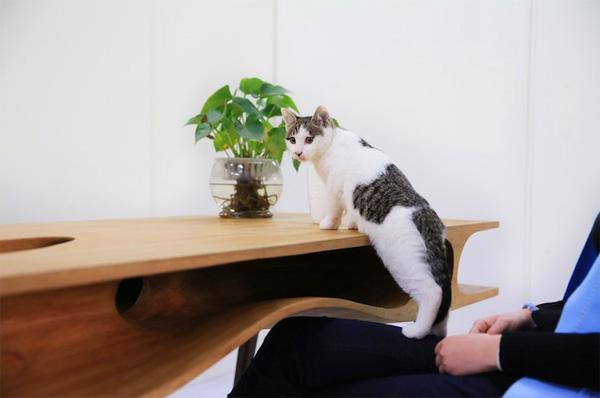 catable-kat-tafel3