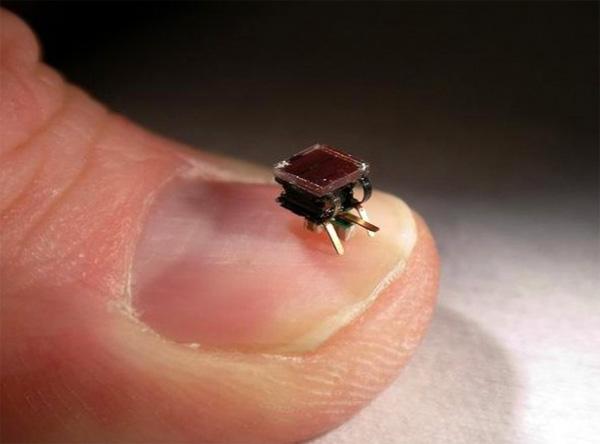 Brrr: razendsnelle robot-mieren