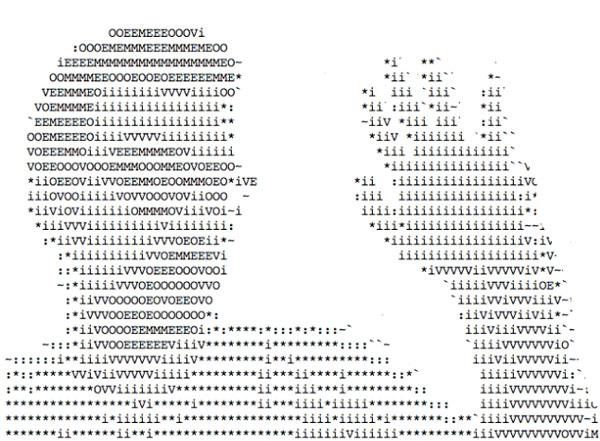 De beelden van je webcam als ASCII art
