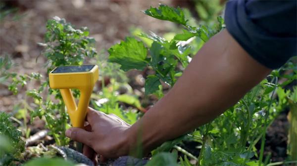 Met Edyn kan iedereen tuinieren