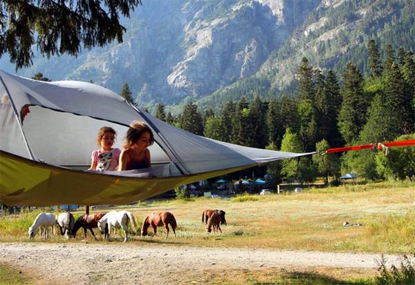 stingray-tent2