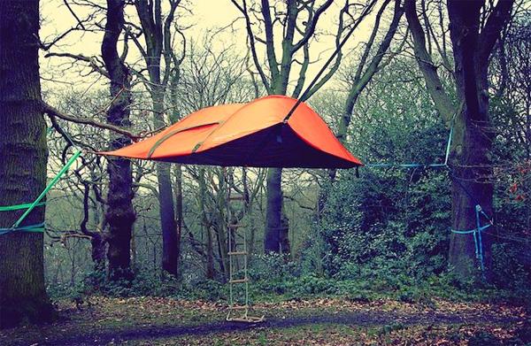 stingray-tent4