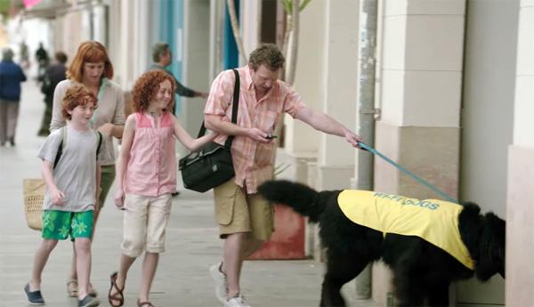 Wi-Fi Dogs: honden die op zoek gaan naar een Wi-Fi-signaal