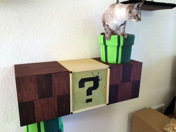 mario-cat-complex-katten2