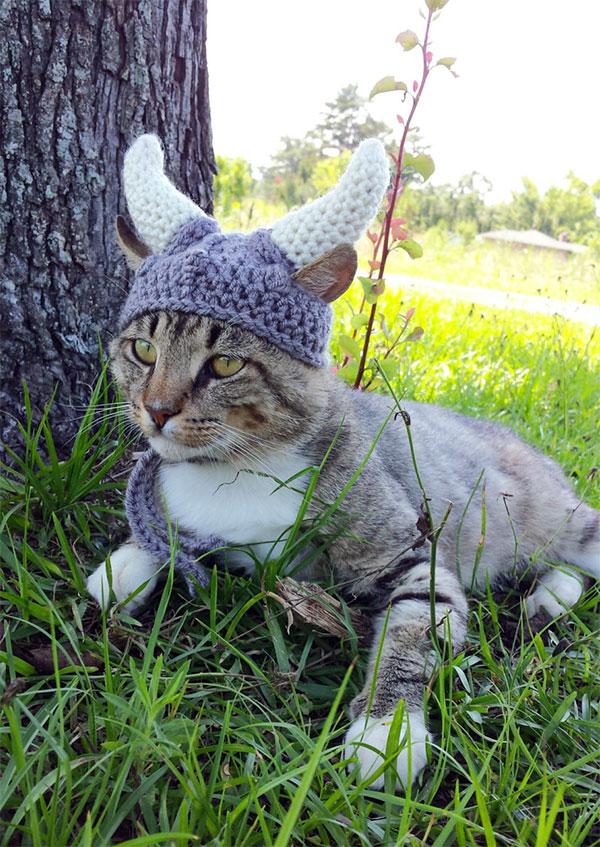 Met de Viking Helmet zit je kat er deze winter warmpjes bij