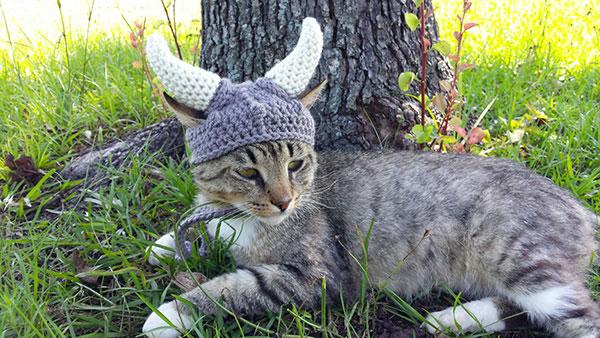 kat-viking-muts3