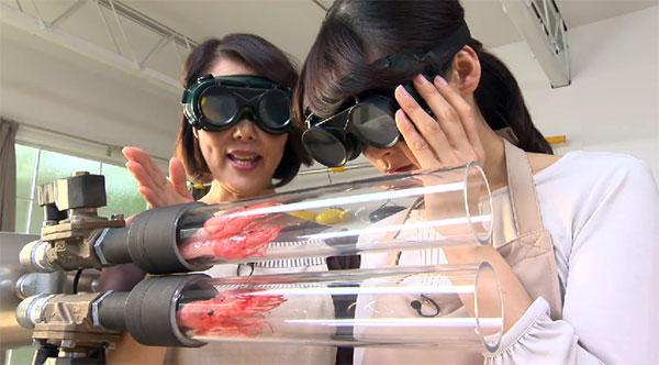 Alleen in een Japan: een kanon dat binnen drie seconden garnalen frituurt