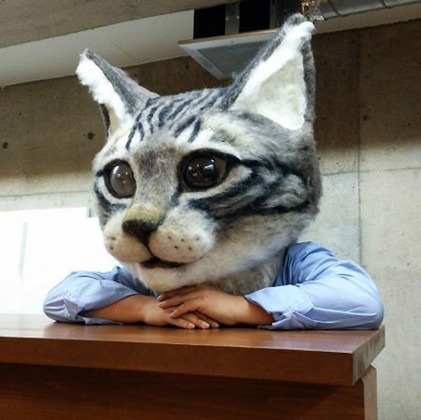 Omdat het kan: een gigantisch kattenmasker van wol