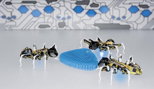 Brrr: robotmieren die angstwekkend veel op echte mieren lijken