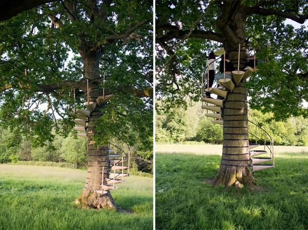 Met de CanopyStair bouw je een trap in een boom zonder 'm te beschadigen