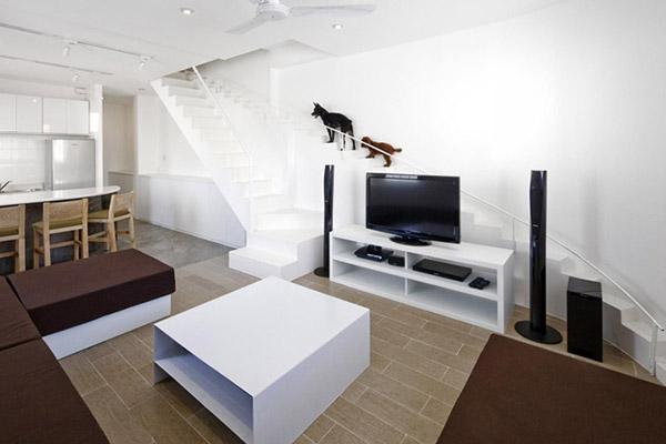 Dierenliefhebber voorziet zijn huis van een extra trap voor honden