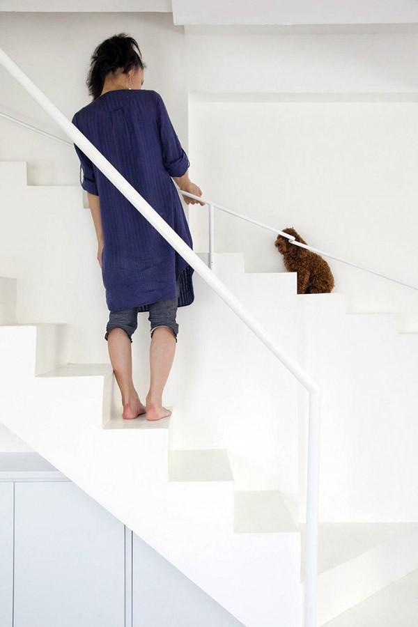 huis-trap-honden4
