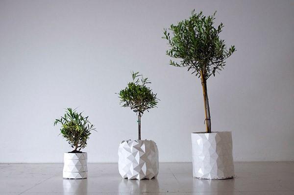 Growth: de plantenbak die meegroeit met je plant