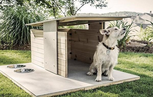 Puphaus: een hondenhok voor verwende honden
