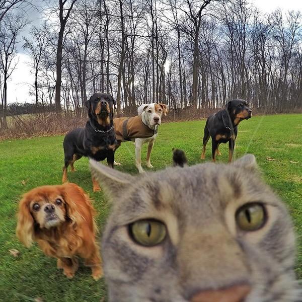 kat-selfie2