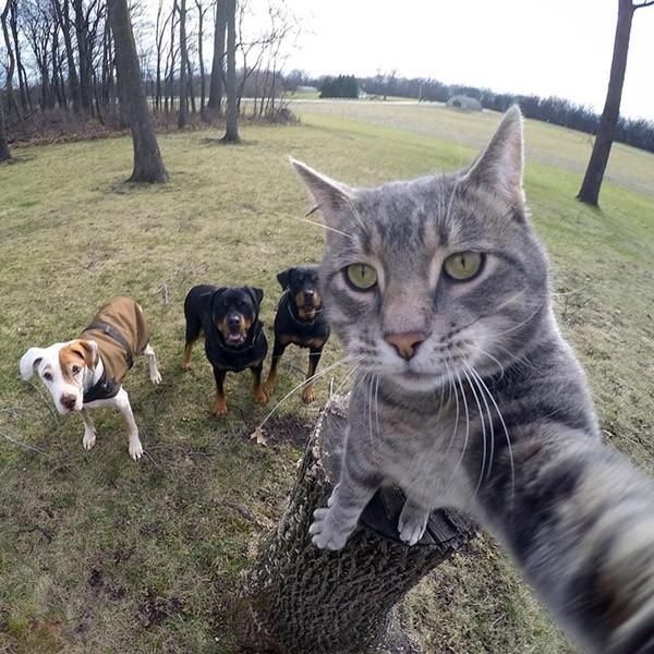 kat-selfie3