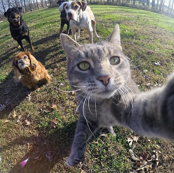 kat-selfie4