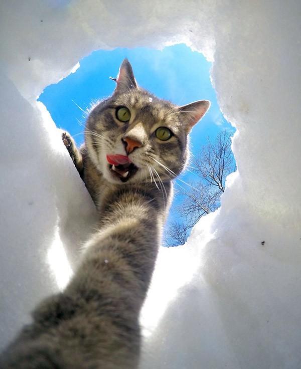 kat-selfie5