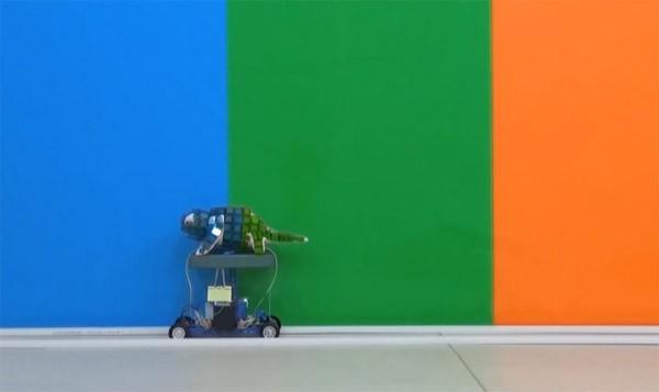 De van kleur veranderende robotkameleon