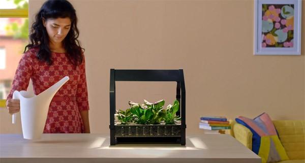 De hydroponische kweekset van IKEA