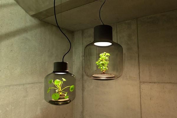 Mygdal: de mooie combinatie van lampen en planten